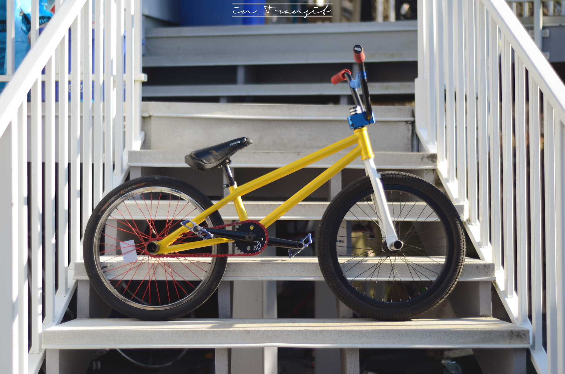 picture of a finished flatland bike.